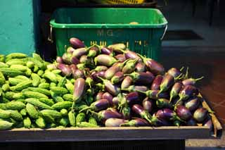 photo,material,free,landscape,picture,stock photo,Creative Commons,An eggplant and a bitter gourd, vegetable store, An eggplant, bitter gourd,