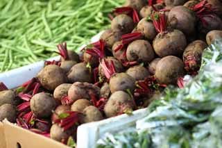 photo,material,free,landscape,picture,stock photo,Creative Commons,Beetroot, vegetable store, Beetroot, Purple, root
