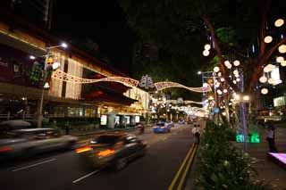photo,material,free,landscape,picture,stock photo,Creative Commons,An orchard road, The sidewalk, Christmas, roadside tree, The tropical zone