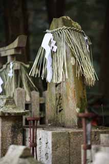 photo,material,free,landscape,picture,stock photo,Creative Commons,Fushimi-Inari Taisha Shrine gravestone, Shinto straw festoon, paper appendix, Inari, fox