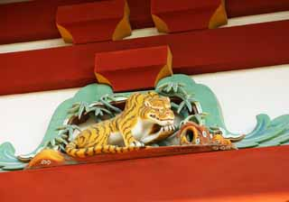 photo,material,free,landscape,picture,stock photo,Creative Commons,Hachiman-gu Shrine tiger, tiger, , I am painted in red, carved wooden panel above paper sliding door