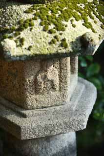 photo,material,free,landscape,picture,stock photo,Creative Commons,Zeniarai-benten Shrine stone lantern, stone lantern, Buddha, Wife of chief zen-priest, Money-making