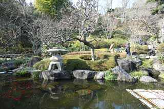 photo,material,free,landscape,picture,stock photo,Creative Commons,Hase-dera Temple garden, stone lantern, goldfish, Buddhism, Chaitya
