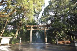 photo,material,free,landscape,picture,stock photo,Creative Commons,Meiji Shrine torii, The Emperor, Shinto shrine, torii, An approach to a shrine