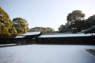 photo,material,free,landscape,picture,stock photo,Creative Commons,Meiji Shrine, The Emperor, Shinto shrine, torii, Snow