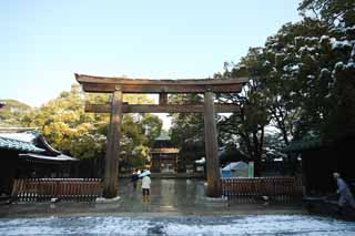 photo,material,free,landscape,picture,stock photo,Creative Commons,Meiji Shrine torii, The Emperor, Shinto shrine, torii, Snow