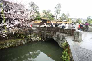 photo,material,free,landscape,picture,stock photo,Creative Commons,Kurashiki Imahashi, Traditional culture, stone bridge, cherry tree, The history